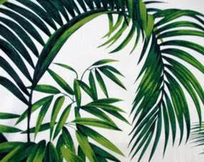 Anartists drawing of palm branches