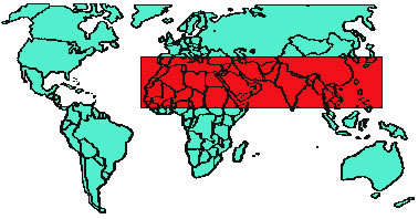 A world map hemispherically placed with the 1040 window marked out in red